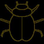 Eine Vorlage für einen Käfer
