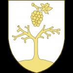 Un arbre sec à deux branches principales, terrassé, surmonté d'une grappe tigée et feuillée, la tige en haut.