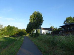 Radweg mit Bäumen rechts, Schatten