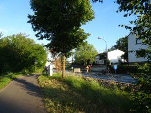 Radweg, Baum, aufgerissene Strasse