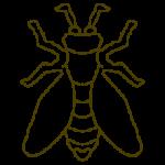 Eine Vorlage für eine Biene